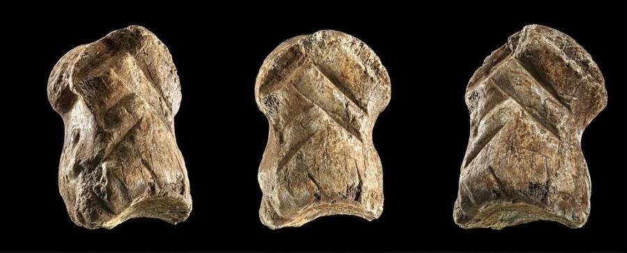 carved_deer_bone_neanderthal.900.jpg