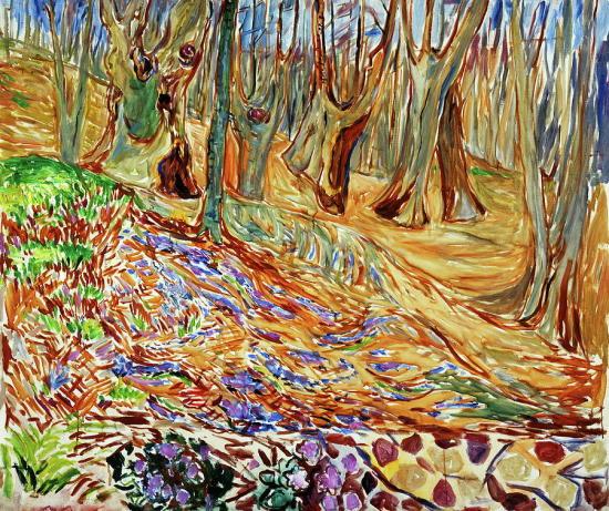 Elm Forest in Spring.jpg